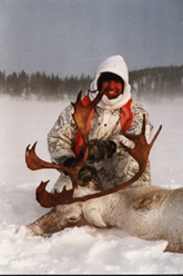 Caribou chasse